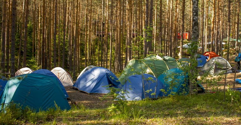 Важная информация для участников палаточного лагеря в рамках проекта «Мой выбор — мой вклад!»